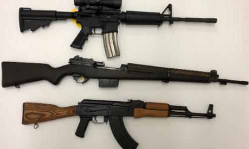 Michigan firearm auction
