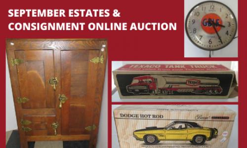 Michigan online Auction