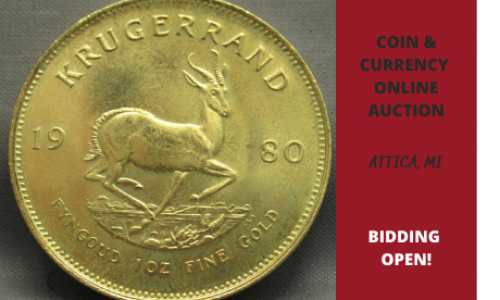 Michigan online coin auction