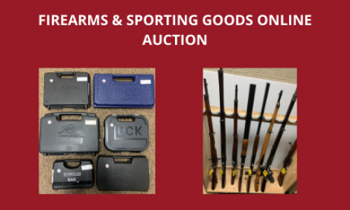 Auction Listings(111)
