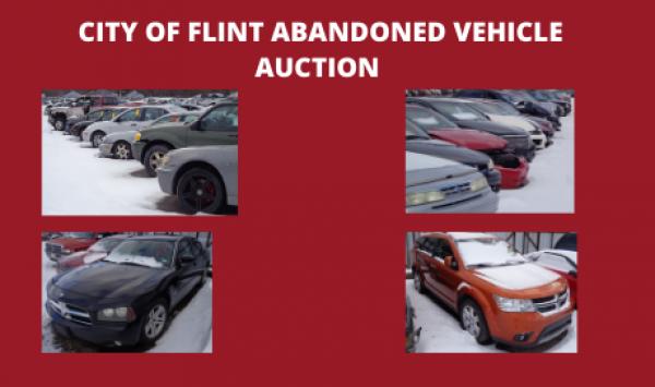 Auction Listings(130)