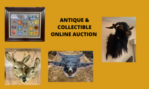 Auction Listings(140)