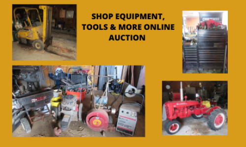 Auction Listings(155)