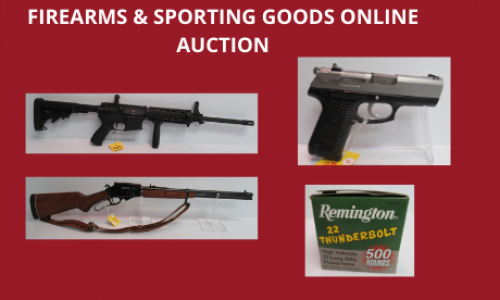 Auction Listings(163)