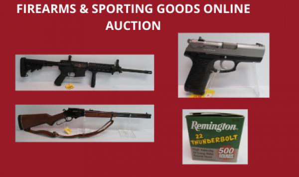 Auction Listings(163)