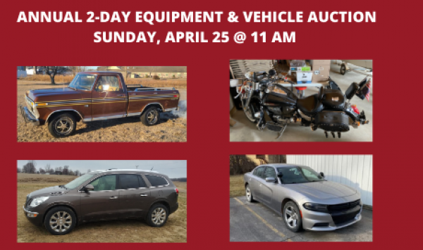 Auction Listings(217)