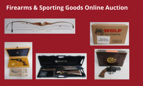 Auction Listings(219)