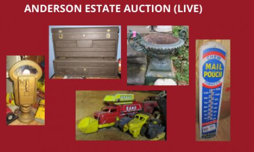 Auction Listings(222)