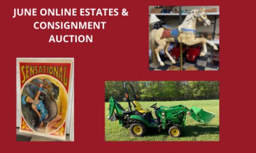 Auction Listings(254)