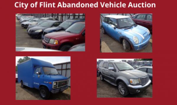 Auction Listings(260)