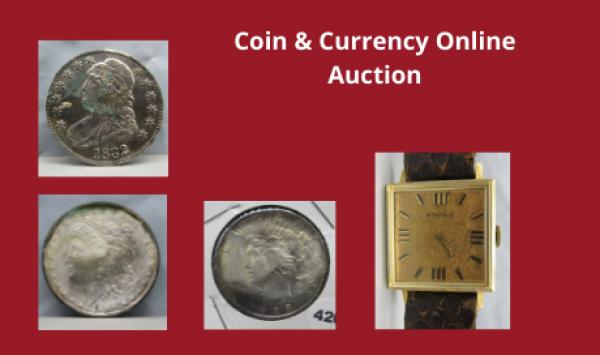 Auction Listings(380)