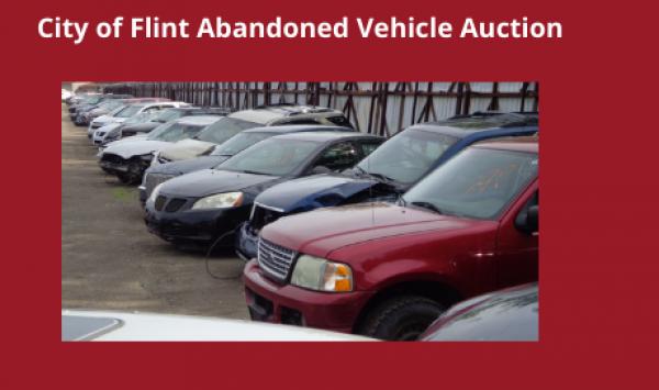 Auction Listings(388)