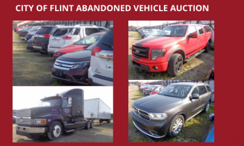 Auction Listings(43)