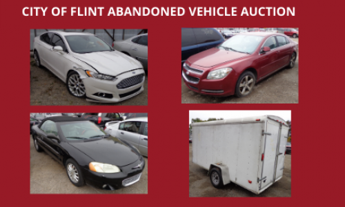 Auction Listings(71)